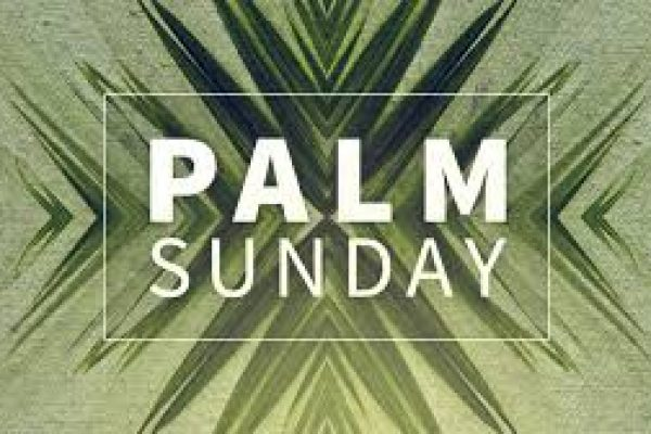 Blessed Palms for Palm Sunday